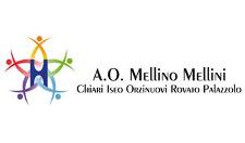 H_Mellino-Mellini